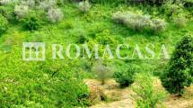 SANT'ANGELO ROMANO – Villino due livelli di 140 mq con Terreno di 4 ettari