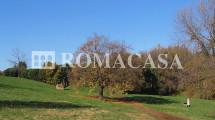 APPIA ANTICA-Ardeatina – Capannoni con annesso terreno – Possibilità trasformazione Residenziale