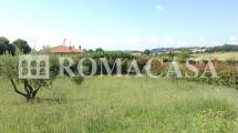 Terreno Villino Bolsena-Piansano -ROMACASA