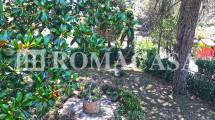 Dettaglio Giardino Villino Terracina-Sabaudia -ROMACASA
