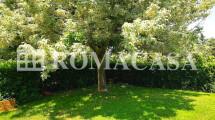 Giardino - Appartamento Castel di Leva - ROMACASA