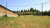 PROCENO (VT) – Terreno di 2 ha – Ottimo investimento