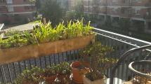EUR – Viale del Tintoretto – Appartamento luminoso con Terrazzo